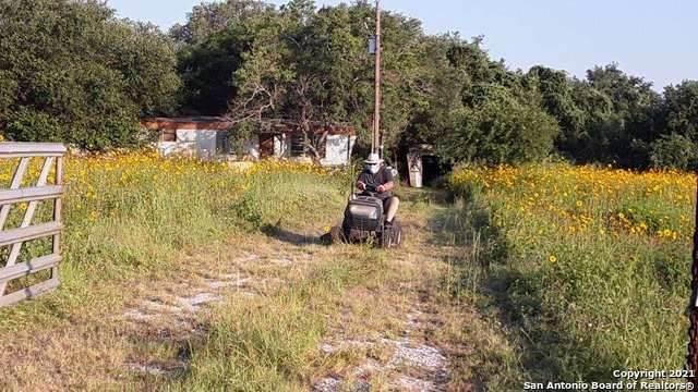 348 Cr 124, Floresville, TX 78114 (MLS #1542292) :: The Gradiz Group