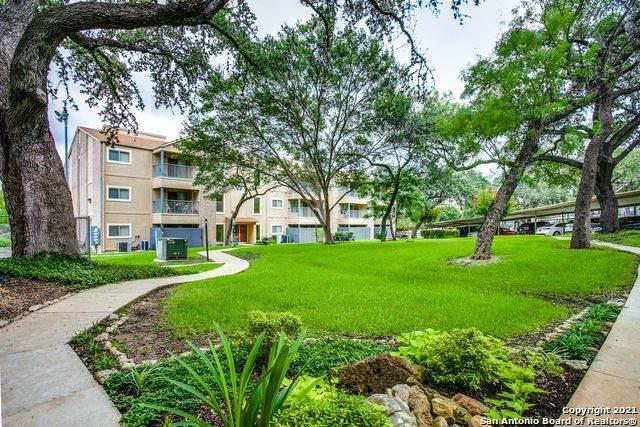 4111 Medical Dr 202A, San Antonio, TX 78229 (MLS #1542502) :: Williams Realty & Ranches, LLC