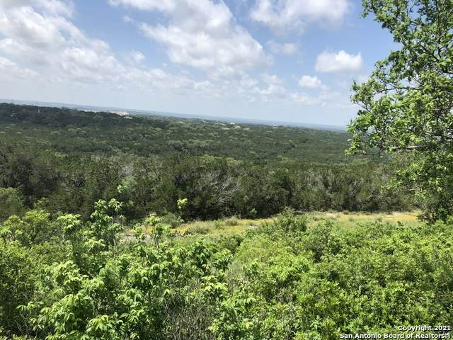 2771 Pr 2771, Mico, TX 78056 (MLS #1542601) :: The Glover Homes & Land Group