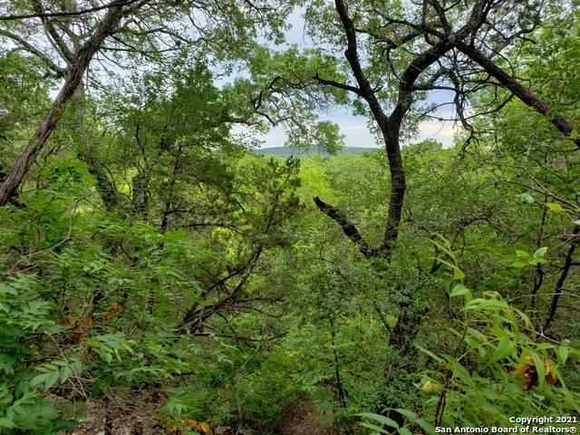0 Hilltop Loop, Lakehills, TX 78063 (MLS #1542633) :: The Gradiz Group