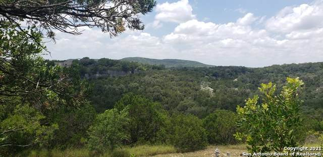11251 Condor Pass, Helotes, TX 78023 (#1542666) :: The Perry Henderson Group at Berkshire Hathaway Texas Realty