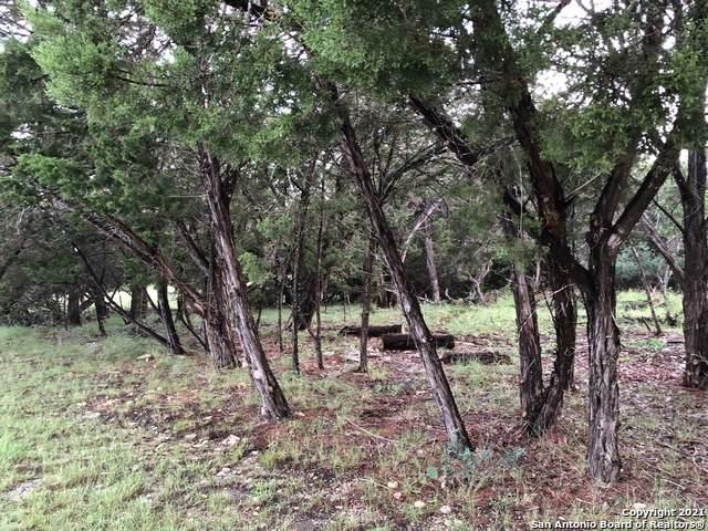 TBD Corner Settlers Ln & Firewheel Dr, Bandera, TX 78003 (MLS #1542720) :: Exquisite Properties, LLC