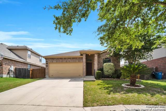 237 Kipper Ave, Cibolo, TX 78108 (MLS #1542803) :: The Glover Homes & Land Group