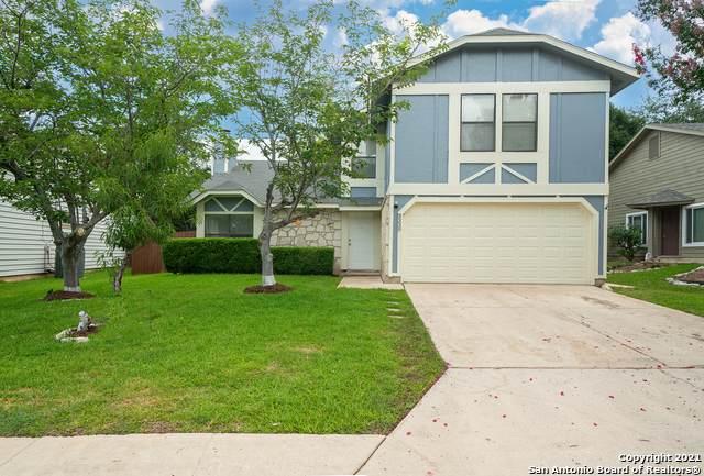 3339 Falcon Grove Dr, San Antonio, TX 78247 (MLS #1542818) :: REsource Realty