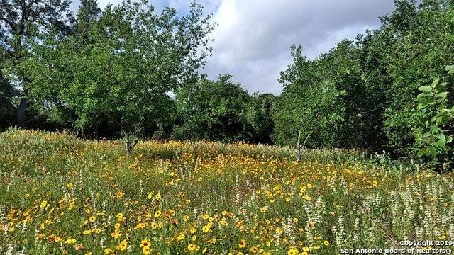 210 Hidden Meadows Circle, Poteet, TX 78065 (MLS #1543376) :: The Lopez Group