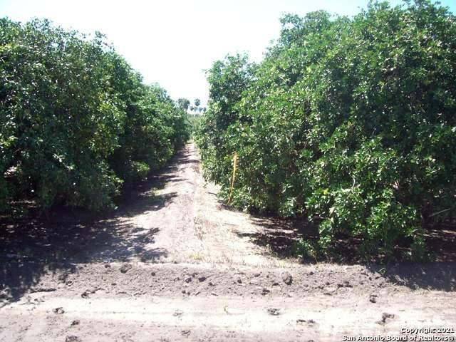 TBD N White Ranch Road, La Feria, TX 78559 (MLS #1543609) :: The Mullen Group | RE/MAX Access