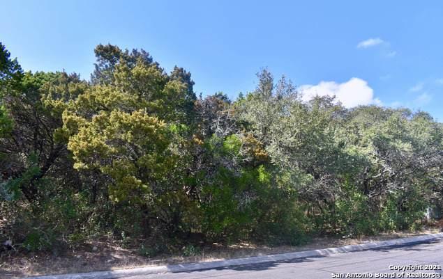 16811 Fox Ridge, Helotes, TX 78023 (MLS #1543700) :: EXP Realty