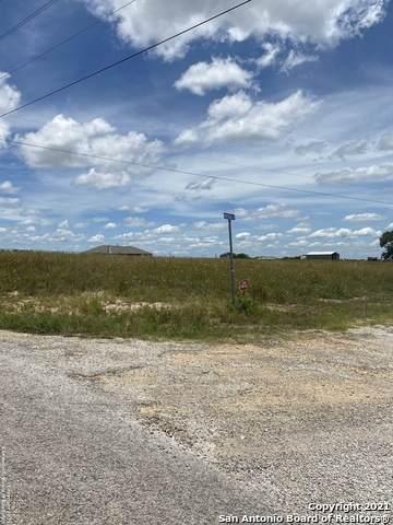305 Honeysuckle Ln, La Vernia, TX 78121 (MLS #1543718) :: The Rise Property Group