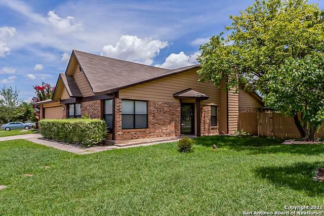 7171 Elk Trail, San Antonio, TX 78244 (MLS #1543750) :: The Real Estate Jesus Team