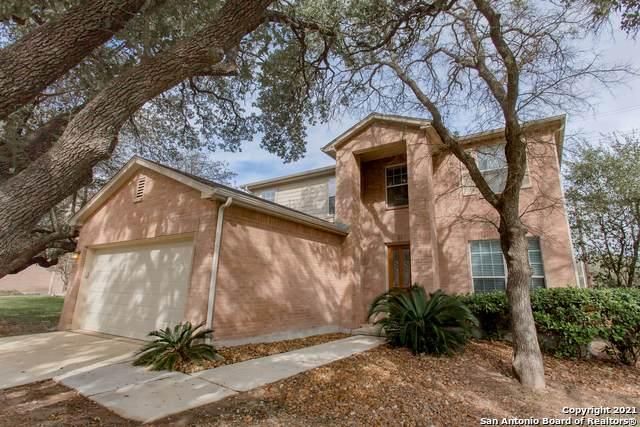 4555 Summer Fall, San Antonio, TX 78259 (MLS #1543779) :: The Lopez Group