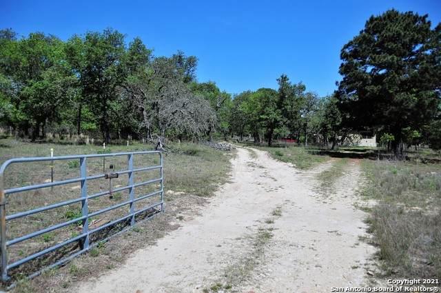 4643 Hickory Forrest Dr, Seguin, TX 78155 (MLS #1543781) :: Exquisite Properties, LLC