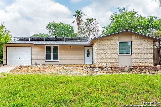 8414 Deer Hollow, San Antonio, TX 78230 (MLS #1543968) :: The Glover Homes & Land Group