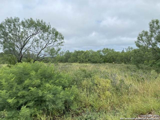 429 Cr 1629, Moore, TX 78057 (MLS #1544031) :: Alexis Weigand Real Estate Group
