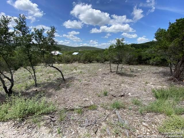 LOT 391 Pr 1748, Mico, TX 78056 (MLS #1544182) :: Exquisite Properties, LLC