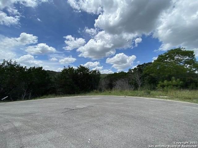LOT 316 Pr 1745, Mico, TX 78056 (MLS #1544184) :: Exquisite Properties, LLC
