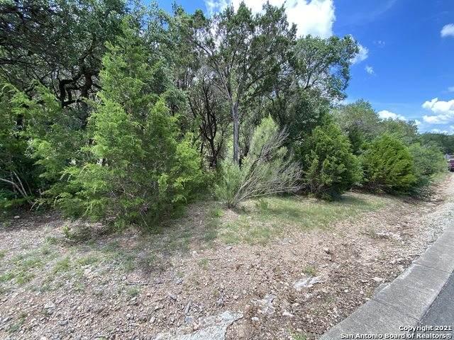LOT 332 Pr 1742, Mico, TX 78056 (MLS #1544185) :: Exquisite Properties, LLC