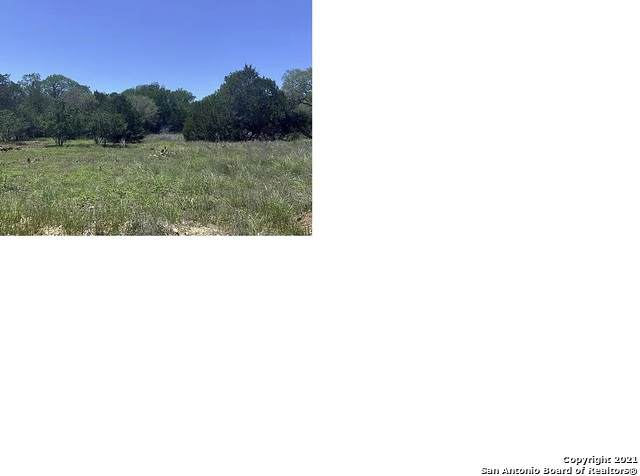 296 Recreation Ln, Spring Branch, TX 78070 (MLS #1544229) :: The Lopez Group