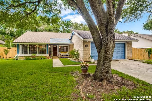 6315 Red Fox St, San Antonio, TX 78247 (MLS #1544287) :: Exquisite Properties, LLC