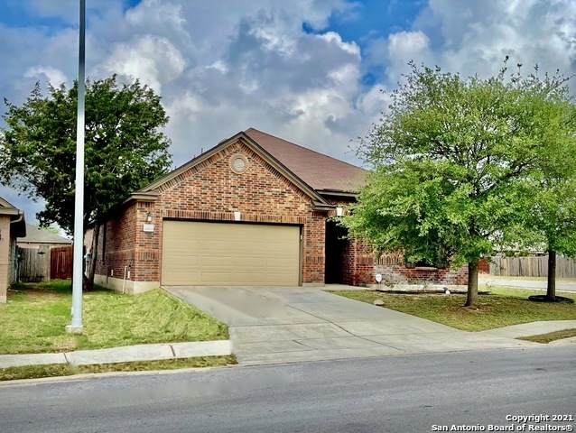 20923 Pearl Harvest, San Antonio, TX 78259 (MLS #1544358) :: The Lopez Group