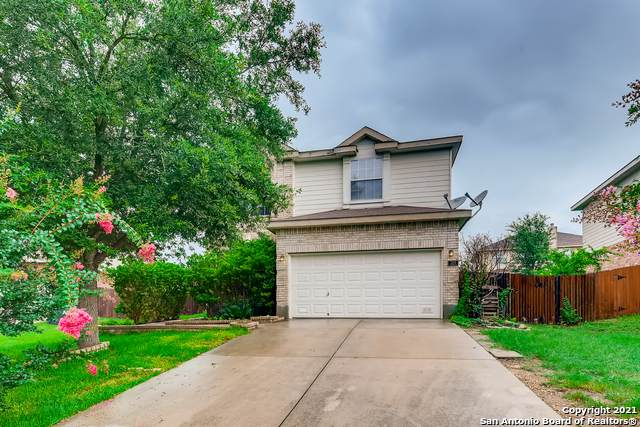 320 Alders Gate, Cibolo, TX 78108 (MLS #1544454) :: The Glover Homes & Land Group