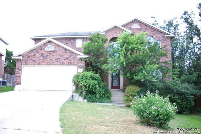 20807 Paso Rocoso, San Antonio, TX 78258 (MLS #1544456) :: The Glover Homes & Land Group