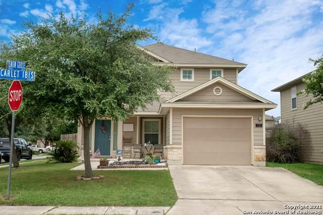 731 N Scarlet Ibis, San Antonio, TX 78245 (MLS #1544475) :: The Real Estate Jesus Team