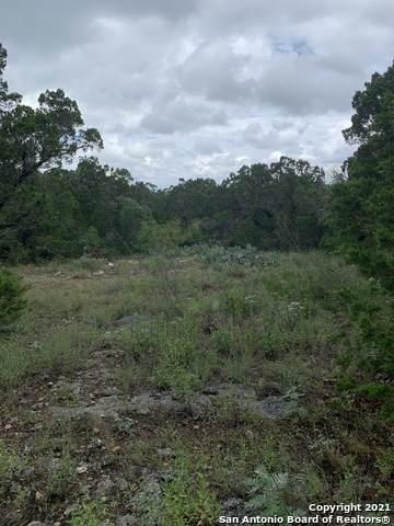 000 County Road 273, Mico, TX 78056 (MLS #1544546) :: Exquisite Properties, LLC