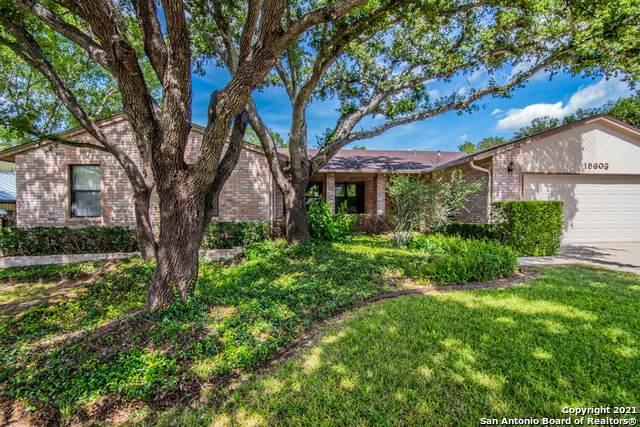 15603 Trail Bluff St, San Antonio, TX 78247 (MLS #1544572) :: Vivid Realty