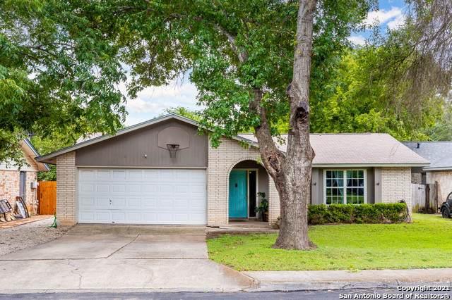 6806 Castlerae, San Antonio, TX 78239 (MLS #1544613) :: The Castillo Group