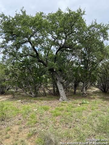 2 E 5TH ST, Lakehills, TX 78063 (MLS #1544664) :: The Gradiz Group
