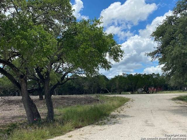 133 Saddle Horn Circle, Bandera, TX 78003 (MLS #1544722) :: Exquisite Properties, LLC
