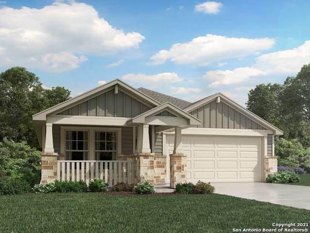 1242 Lennea Garden, New Braunfels, TX 78130 (MLS #1545040) :: The Castillo Group