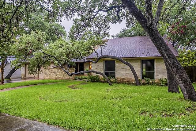 12819 Kings Forest St, San Antonio, TX 78230 (MLS #1545173) :: The Castillo Group