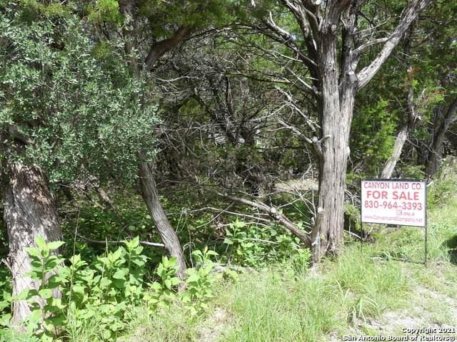 121 Black Oak Dr, Canyon Lake, TX 78133 (MLS #1545326) :: Carter Fine Homes - Keller Williams Heritage