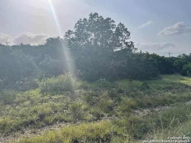 831 Rayner Ranch Blvd, Spring Branch, TX 78070 (MLS #1545370) :: The Real Estate Jesus Team