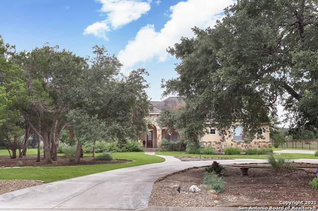 10510 Teich Loop, New Braunfels, TX 78132 (MLS #1545472) :: Carolina Garcia Real Estate Group
