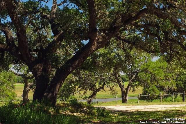 780 W Ansley Forest, Bulverde, TX 78163 (MLS #1545572) :: HergGroup San Antonio Team