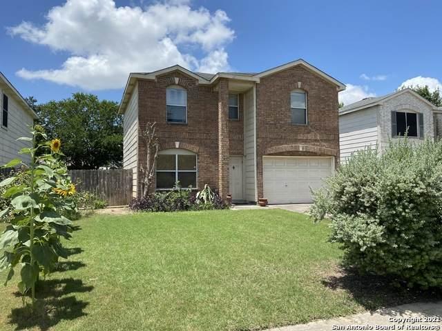 3847 Wetmore Ridge, San Antonio, TX 78247 (MLS #1545843) :: The Castillo Group