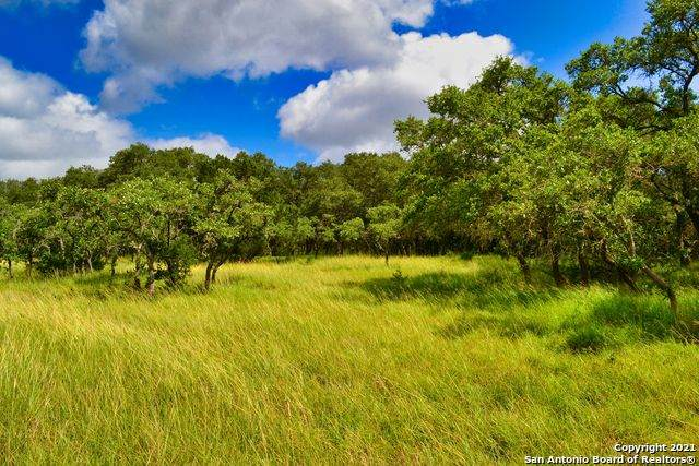 86 High Point Ranch Rd, Boerne, TX 78006 (MLS #1545886) :: Tom White Group