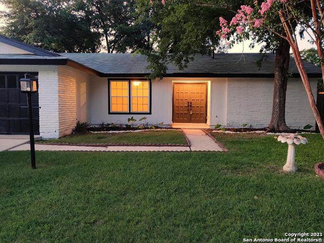 6919 Glen Fair, San Antonio, TX 78239 (MLS #1546011) :: The Lopez Group