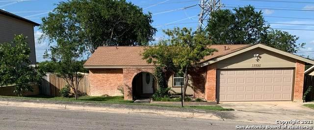 14406 Briarfern St, San Antonio, TX 78247 (MLS #1546025) :: Vivid Realty