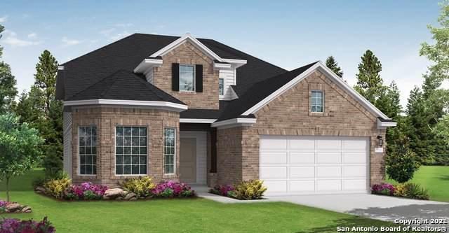 507 Bindseil Grove, Schertz, TX 78154 (MLS #1546085) :: The Glover Homes & Land Group