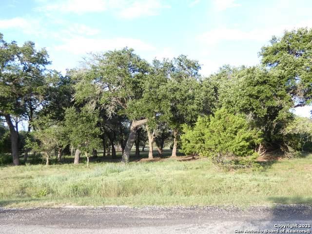 107 S Calvin Barrett, Blanco, TX 78606 (MLS #1546128) :: ForSaleSanAntonioHomes.com