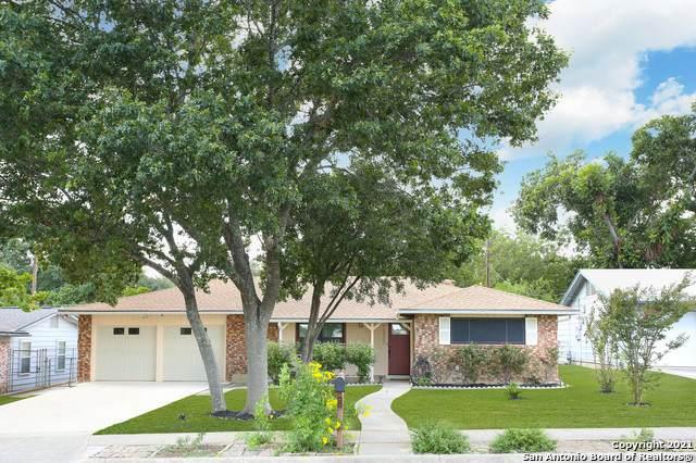 10907 Wedgewood Dr., San Antonio, TX 78230 (MLS #1546137) :: Texas Premier Realty