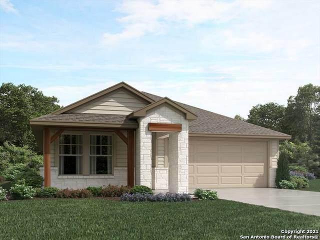 1231 Lennea Garden, New Braunfels, TX 78130 (MLS #1546183) :: The Castillo Group
