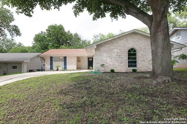 10411 Tioga Dr, San Antonio, TX 78230 (#1546296) :: Zina & Co. Real Estate