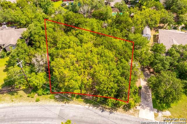 26364 Romance Point St, San Antonio, TX 78260 (MLS #1546300) :: The Castillo Group