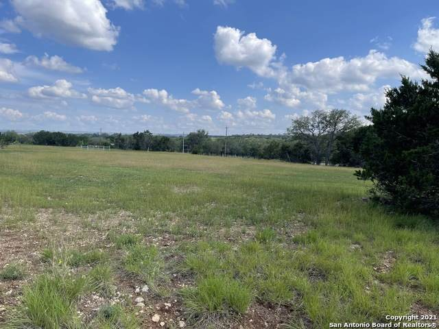 4 Clear Creek Rd, Blanco, TX 78606 (MLS #1546418) :: The Glover Homes & Land Group