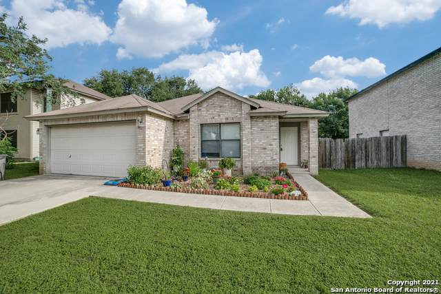 8847 Charter Pt, San Antonio, TX 78250 (MLS #1546431) :: REsource Realty