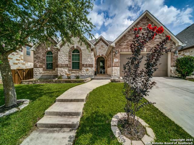 25935 Natal Plum, San Antonio, TX 78261 (MLS #1546521) :: The Real Estate Jesus Team